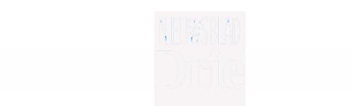 stedendriehoek-logo-trans-(nw)
